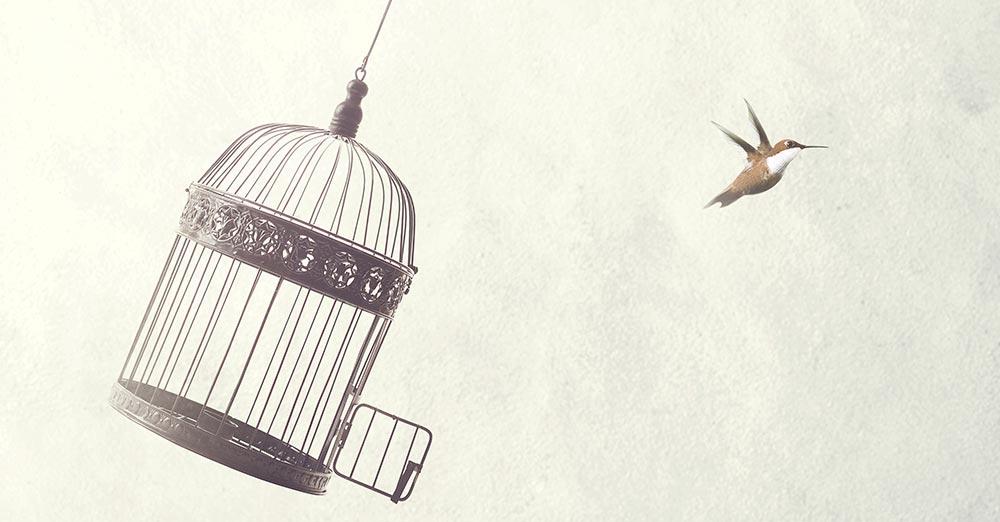 poliamoria - egy madár elhagyja a kalitkát